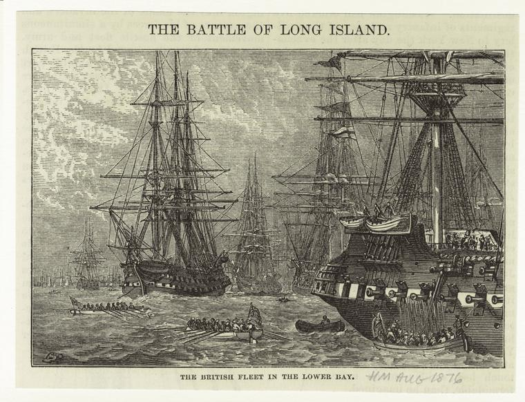The_British_fleet_in_the_lower_bay_1876